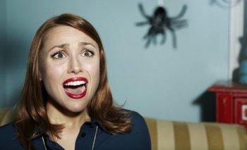 ¿Por qué muchos de nosotros matamos arañas con tanta indiferencia?