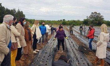 Las autoridades conocieron diversas experiencias de trabajadoras del medio rural.