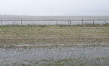 En varios campos las lluvias superaron el nivel adecuado y eso incrementará los costos