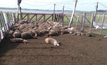 Este fue el panorama con el que se toparon los trabajadores rurales el viernes a las 7:45 de la mañana.