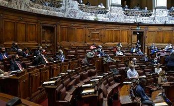 El 61% de los parlamentarios se definió como de izquierda o centro-izquierda