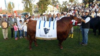 El mejor Angus de la Expo Prado en el podio del mundo.