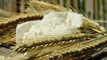 Se está coordinando si la donación será de harina o también de fideos.