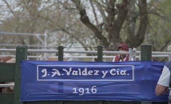 Ferias ganaderas de Valdez y Cía