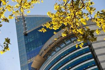 Antel ofrece bonos y promociones por la pandemia