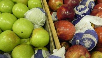 Variedades de manzanas.