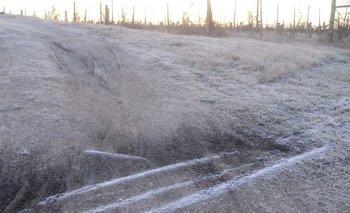 Después de las lluvias escasas ocurrieron heladas