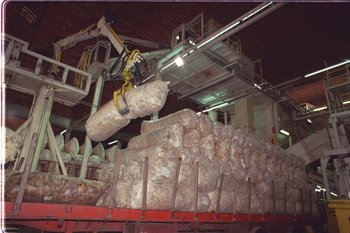 Las exportaciones de lanas en el último año móvil reportaron US$ 122,2 millones.