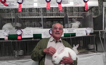 Brígido Liesegang exhibe al mejor conejo de 2013
