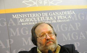 Daniel Gilardoni, director de la Dinara (MGAP)