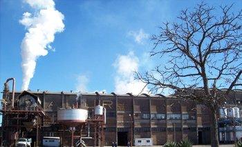 Complejo industrial de ALUR en Artigas