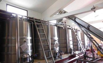 La vitivinicultura uruguaya obtuvo un buen reconocimiento
