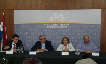 Pedro Soust, Enzo Benech, Eneida De León y Alejandro Nario en la conferencia de este miércoles.<br>