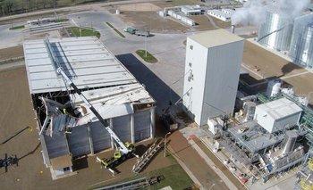 Un galpón de la planta nueva de ALUR en Paysandú sufrió la caída parcial del techo. Gentileza El Telégrafo