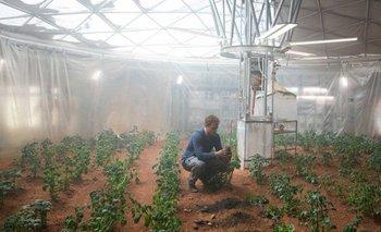 """En el filme """"Operación rescate"""", el personaje de Matt Damon cultiva papas en Marte"""