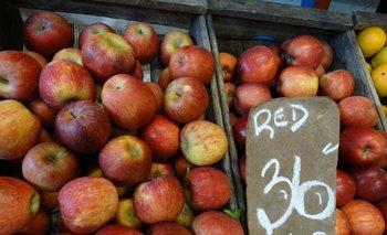 La importación de manzana, de suceder, se daría a fines de 2016.<br>