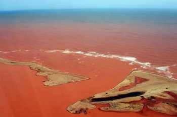 <div>Vista aérea del río Doce, inundado de tóxicos.</div>