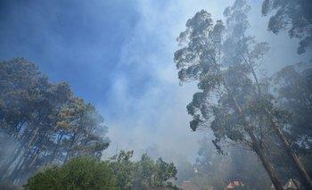 Incendio en Punta Ballena