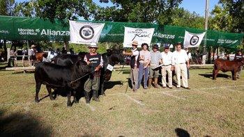 La Gran Campeona Brangus de Pablo Bove Itzaina y Bayucuá<br>