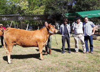 La Gran Campeona Limousin de Julio A. Severi<br>