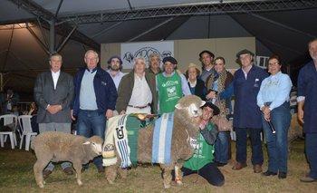 Otra foto en el historial de grandes campeones de la cabaña La Estela, de Risso, Soriano.<br>