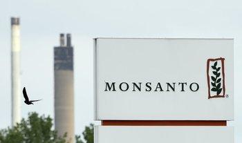 Monsanto fue adquirida por Bayer en 2018.
