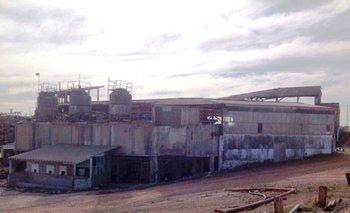 El predio donde se ubica la planta industrial de la ex-Metzen y Sena abarca 29 padrones<br>