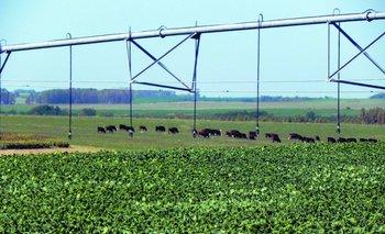 Regadores Unidos del Uruguay llegó para expandir la tecnología del riego en el agro<br>