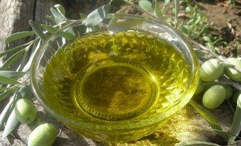 El aceite de oliva extra virgen de Uruguay muestra su potencial<br>