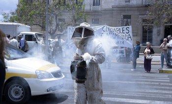 Los apicultores se movilizaron desde el Rosedal del Prado al Palacio Legislativo.<br>
