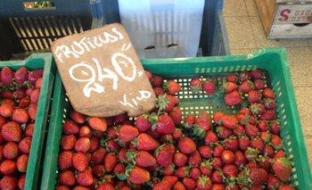 El precio de la frutilla ayer en un puesto del Mercado Agrícola de Montevideo.<br>