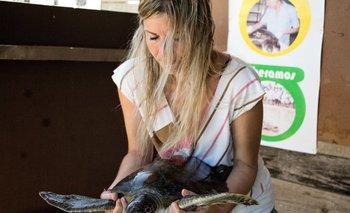 La doctora en veterinaria de Karumbé comienza a revisar a una de las tortugas en rehabilitación internada en la base científica de Cerro Verde.