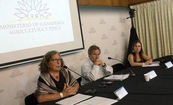 Zulma Gabard, Federico Montes y Margarita Rodríguez en la sede del MGAP.<br>
