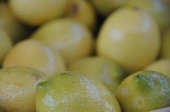 Producción de limones.