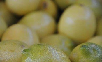 En esta época del año se alcanzan los niveles picos en el consumo de limones