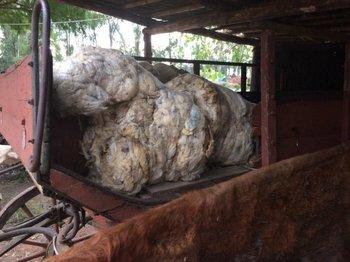 Así era cómo se trasladaba la lana de las estancias antiguamente.