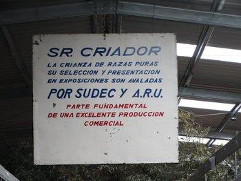 La XXXIII Expo Otoño se desarrolla en la Rural del Prado.