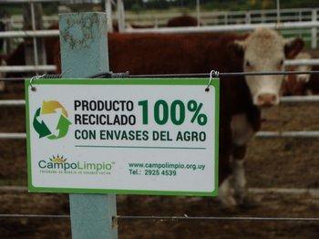 En el feedlot de Expo Melilla se utilizaron plásticos reciclados gracias a la gestión de Campo Limpio.<br>
