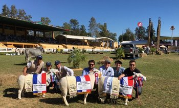 Los tres mejores Texel PI de la Expo Paraguay 2017 fueron uruguayos<br>
