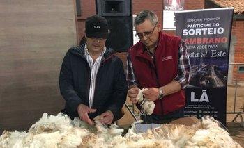 Djalma Puppo y José Luis Trifoglio calificando uno de los vellones Ideal
