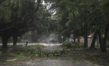 <div>Así quedó una ciudad por los fuertes vientos a causa del huracán Irma en Estados Unidos <div><br></div></div>