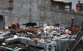 <div>Terremoto en México, foto de archivo<br></div>