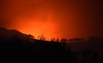Imagen de un bosque incendiado en California