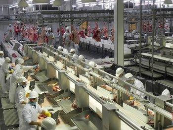 Las exportaciones de carne vacuna crecieron 8%.