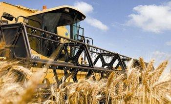 Los productores brasileños se quejan por los altos costos que enfrentan<br>