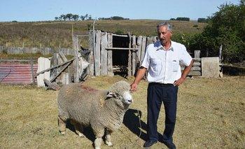 El alcalde blanco Luis Seguí tiene 77 años y es un productor rural de la zona