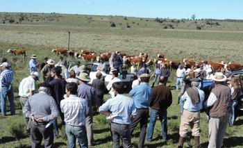 Jornadas junto a los productores ganaderos, una característica del Instituto Plan Agropecuario