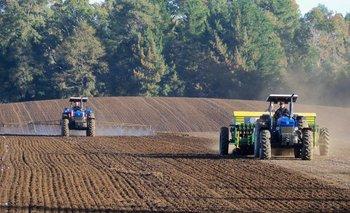 La agricultura juega un papel clave en la producción de alimentos<br>