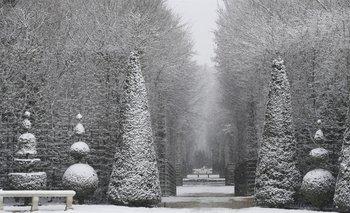 Los jardines del Palacio de Versalles, en Francia, pintados de blanco<br>