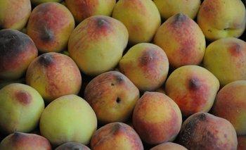 Duraznos, una de las frutas que prácticamente no existió este año en la producción uruguaya